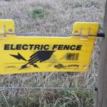 Electrificado