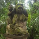 El parque de lo' mono