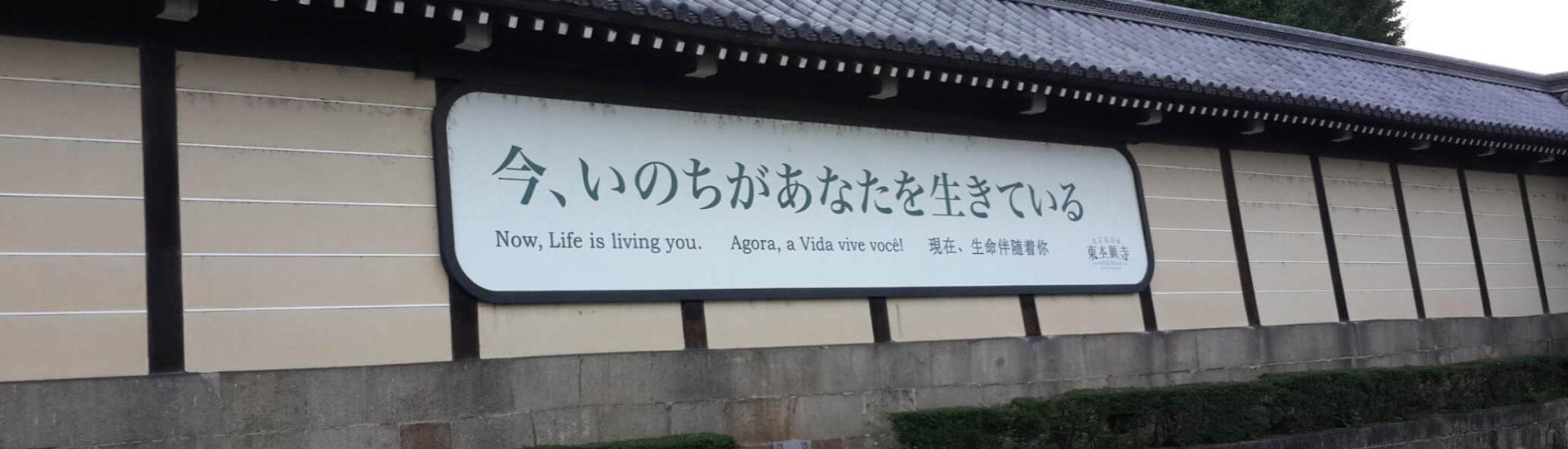 Ahora la vida te vive. Kyoto